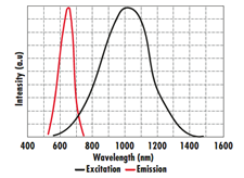NIR Detection Products